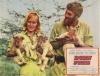 Volání divočiny (1966)