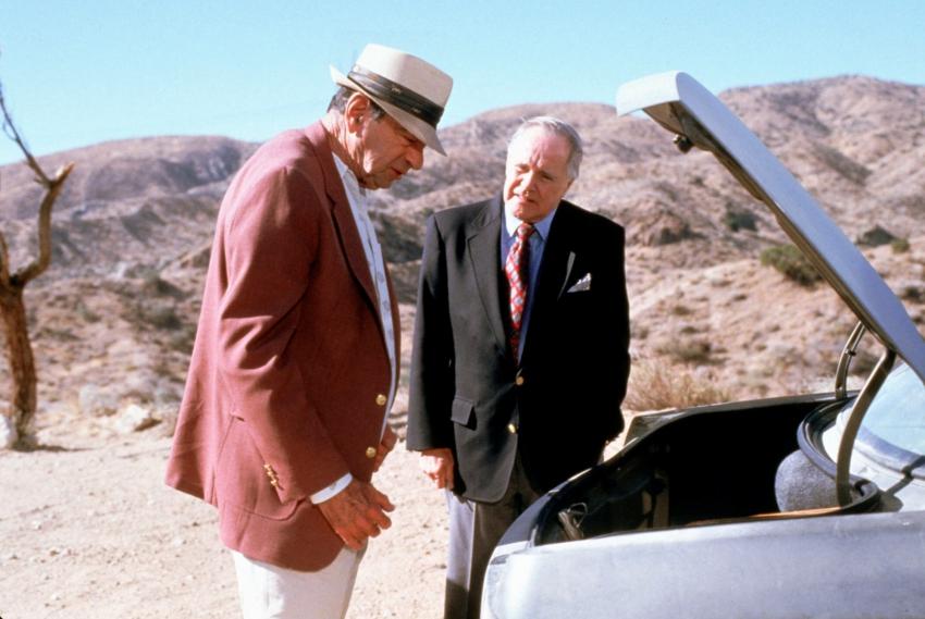Správná dvojka II (1998)