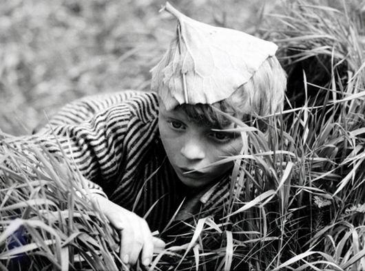 Ať žije republika (1965)