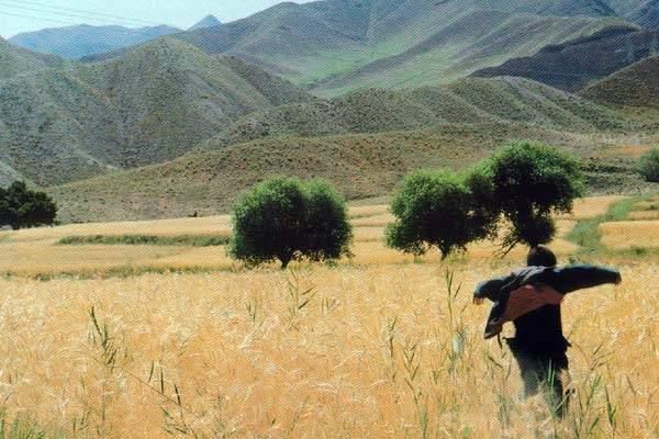 Sanam (1999)