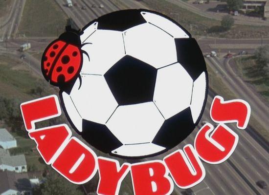 Berušky (1992)