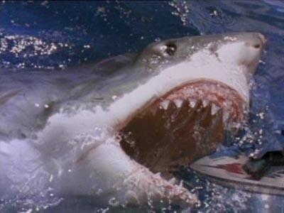 Žralok útočí 3: Lidožrout (2003)