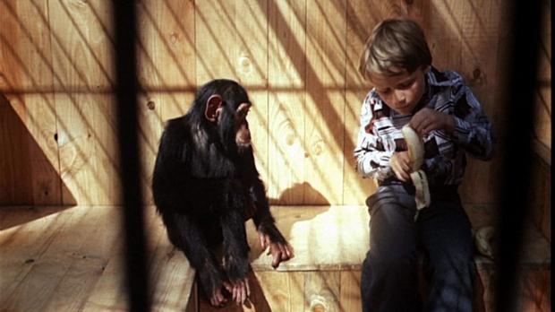 Terezu bych kvůli žádné holce neopustil (1976)