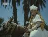 Přeludy pouště (1982)