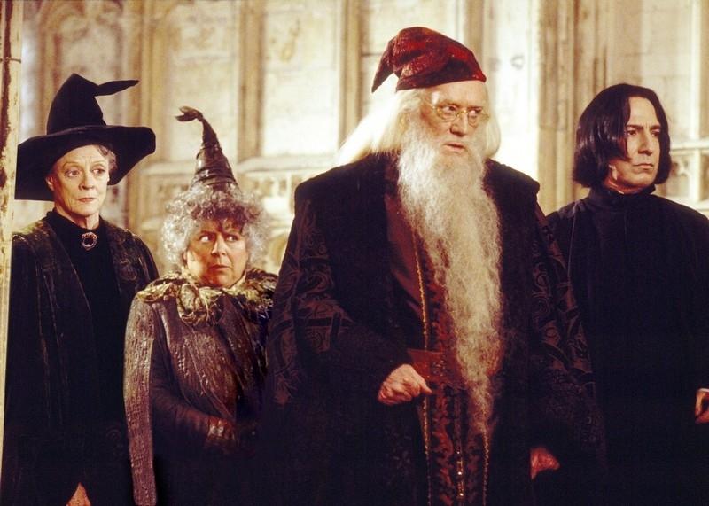 Harry Potter a Fénixův řád (2007)