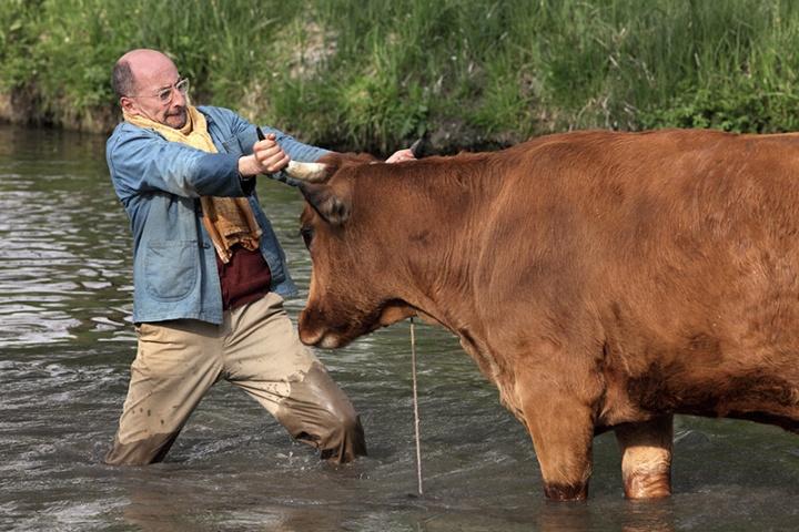 La vache (2016)