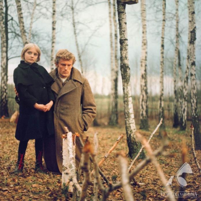 Březový háj (1971)