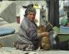 Ve městě je hodně psů (2011) [Mini DV CAM]