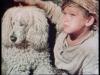 Bílý pudl (1957)