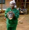 Gorily mezi Prahou a Afrikou (2011) [TV film]
