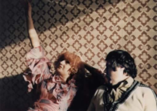 Panelstory aneb Jak se rodí sídliště (1979)