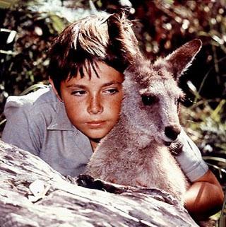 Skippy (1967) [TV seriál]