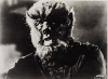 Face of the Screaming Werewolf (1964)
