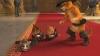 Kocour v botách a tři ďáblové (2012) [Video]