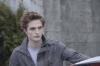 Twilight sága: Stmívání (2008)