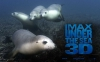 Podmořský svět  3D (2009)