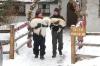 The Dog Who Saved Christmas Vacation (2010) [TV film]