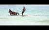 (Ne)všední život v pásmu (2013) [BR kinodistribuce]