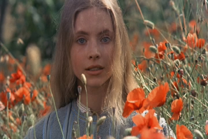 Bratr Slunce, sestra Luna (1972)