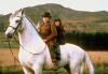 Cesta na západ (1992)