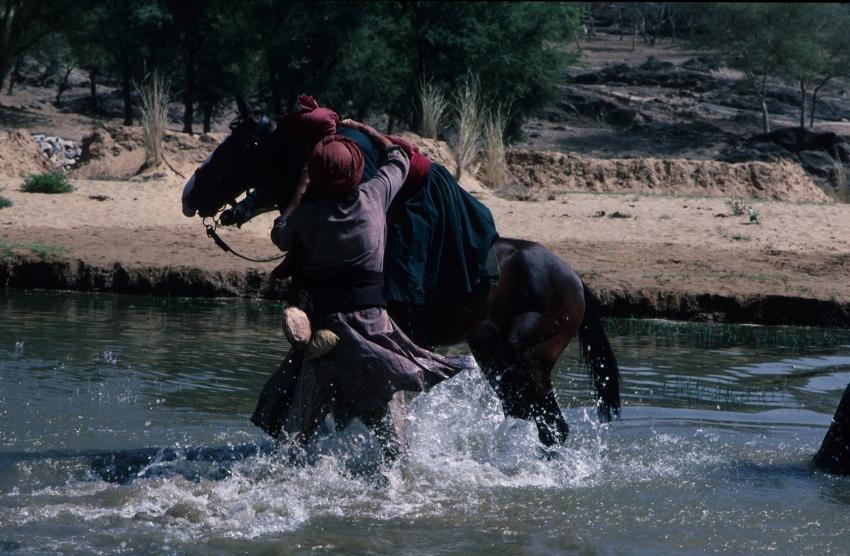 Podvodníci (1988)