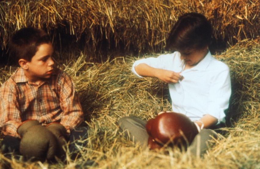 Můj život jako pes (1985)