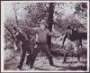Roaring Ranch (1930)