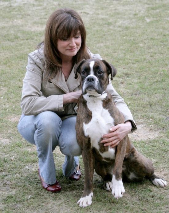 Německá boxerka Xira  shodou nešťastných náhod přišla o paničku a tak jsme  ji ve 2 a půl letech adoptovali.