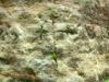 Znaky ve skalách (2013) [TV epizoda]