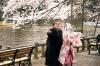 Hanami – čas kvetoucích třešní (2008)