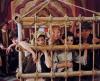 Cesta do Indie a zpět (1994) [TV epizoda]
