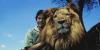 The Lion (1962)
