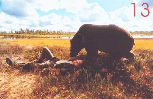 Karu Süda - Medvědí srdce (2001)