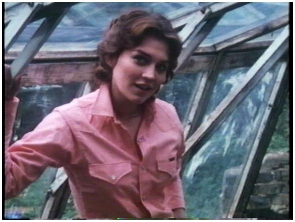 Věci po Richardovi (1980)