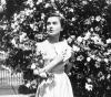 Vesna (1953)