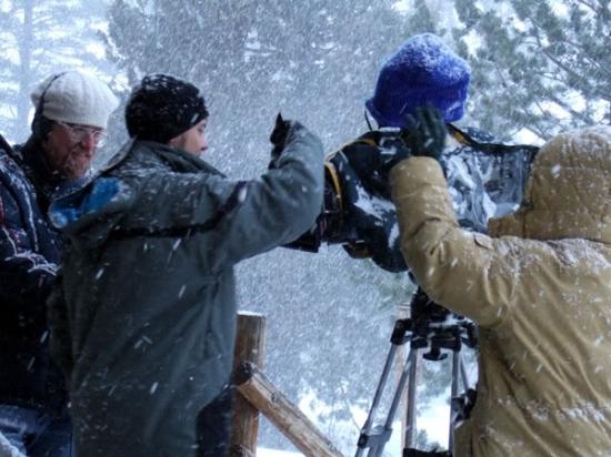 Krvavý sníh (2009)