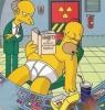 Ať žijí Simpsonovi (1998) [Video]