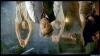 Od soumraku do úsvitu 3: Dcera oběšence (1999)
