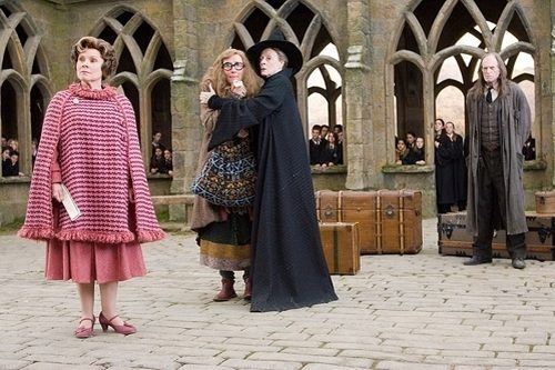 Harry Potter a Fénixův řád (2007)