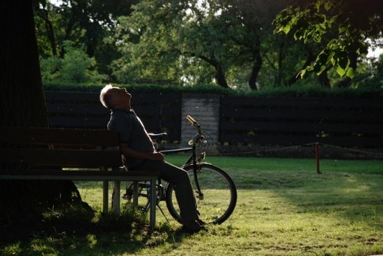 Sedmé nebe (2008)