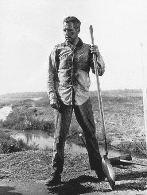 Frajer Luke (1967)