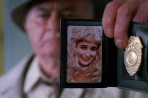 Mlčení šunek (1993)
