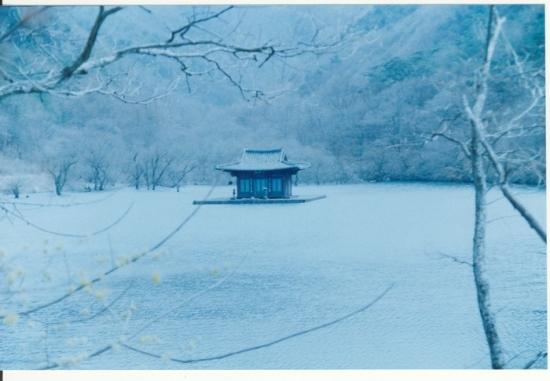 Jaro, léto, podzim, zima... a jaro (2003)
