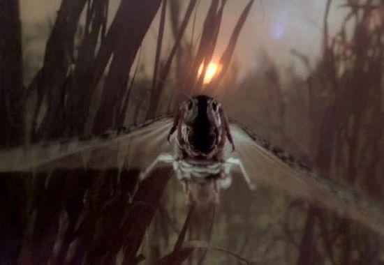Vymítač ďábla II: Kacíř (1977)