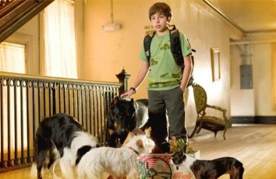 Hotel pro psy (2008)