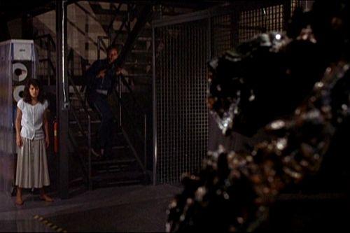 Moucha 2 (1989)