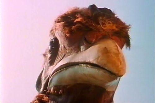 Kuřecí park (1994)
