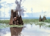 Nesmělí lidé (1987)