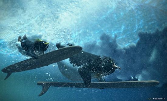 Divoké vlny (2007)