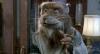 Želví nindžové 3 (1993)